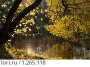 Купить «Утро», фото № 1265118, снято 18 октября 2009 г. (c) Роман Мухин / Фотобанк Лори