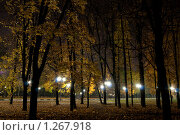 Купить «Ночь в парке», фото № 1267918, снято 19 октября 2009 г. (c) Роман Мухин / Фотобанк Лори