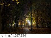 Купить «Ночная аллея», фото № 1267934, снято 19 октября 2009 г. (c) Роман Мухин / Фотобанк Лори