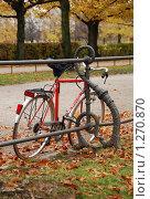 Велосипед (2008 год). Редакционное фото, фотограф Александра Четверикова / Фотобанк Лори