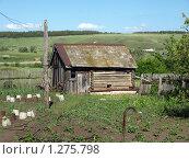 Купить «Деревенская баня», фото № 1275798, снято 7 июня 2009 г. (c) Сергей Зубов / Фотобанк Лори