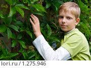 Купить «Подростковый возраст», фото № 1275946, снято 25 июля 2009 г. (c) Анна Лурье / Фотобанк Лори