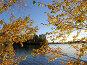 Золотая осень в Карелии. Насоновское озеро. Взгляд на озеро и островок через жёлтые листья, эксклюзивное фото № 1281826, снято 25 сентября 2006 г. (c) Тамара Заводскова / Фотобанк Лори