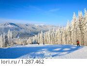Купить «Горнолыжный курорт», фото № 1287462, снято 2 февраля 2009 г. (c) Юрий Брыкайло / Фотобанк Лори