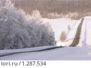Купить «Зимняя дорога», фото № 1287534, снято 11 декабря 2009 г. (c) Sergey / Фотобанк Лори
