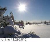 Зимний солнечный день. Стоковое фото, фотограф Таир Сейтхалилов / Фотобанк Лори