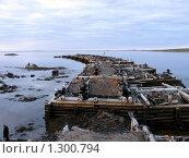 Кемь, Белое море. Стоковое фото, фотограф Александр Лазутин / Фотобанк Лори