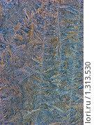 Купить «Зимние узоры», фото № 1313530, снято 4 марта 2005 г. (c) Кравецкий Геннадий / Фотобанк Лори