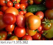 Урожай. Стоковое фото, фотограф Светлана Власенко / Фотобанк Лори