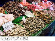 Купить «Устрицы», фото № 1317362, снято 8 мая 2008 г. (c) Федор Кондратенко / Фотобанк Лори