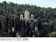 Купить «Горненский женский монастырь», фото № 1321058, снято 19 декабря 2009 г. (c) Irina Opachevsky / Фотобанк Лори