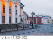 Купить «Набережная Лейтенанта Шмидта. Горный институт. Санкт-Петербург», эксклюзивное фото № 1326302, снято 29 ноября 2009 г. (c) Александр Щепин / Фотобанк Лори