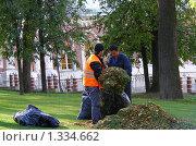 Рабочие убирают опавшую листву в парке Царицыно (2008 год). Редакционное фото, фотограф lana1501 / Фотобанк Лори