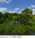 Купить «Суздаль. Река Каменка», эксклюзивное фото № 1339254, снято 12 июля 2009 г. (c) Павел Широков / Фотобанк Лори