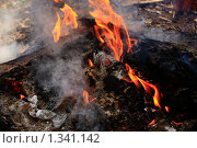 Костёр. Стоковое фото, фотограф Толкачёв Евгений / Фотобанк Лори
