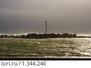 Купить «Шторм на Балтийском море», фото № 1344246, снято 4 октября 2009 г. (c) Анна Лурье / Фотобанк Лори