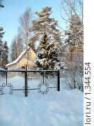 Загород. Стоковое фото, фотограф Омельян Светлана / Фотобанк Лори