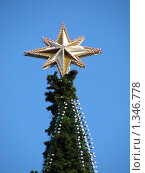 Купить «Фрагмент новогодней елки в Парке Победы, Москва», эксклюзивное фото № 1346778, снято 5 января 2010 г. (c) lana1501 / Фотобанк Лори