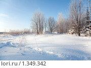 Купить «Зимний пейзаж», фото № 1349342, снято 3 января 2010 г. (c) Алексей Калашников / Фотобанк Лори