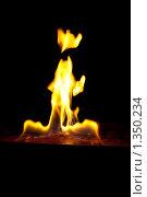 Пламя на чёрном фоне. Стоковое фото, фотограф Алексей Головин / Фотобанк Лори