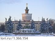 """Купить «Фонтан """"Каменный цветок"""" зимой фрагмент и павильон """" Украина"""" ВСХВ, ВДНХ, ВВЦ», эксклюзивное фото № 1366154, снято 10 января 2010 г. (c) Алёшина Оксана / Фотобанк Лори"""