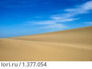 Дюны Балтийского моря (2008 год). Редакционное фото, фотограф Николай Пуцын / Фотобанк Лори