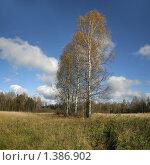 Купить «Осенний пейзаж в средней полосе», фото № 1386902, снято 15 октября 2008 г. (c) Антон Алябьев / Фотобанк Лори