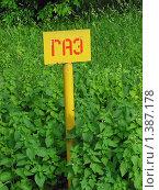 """Купить «Табличка """"Газ""""», эксклюзивное фото № 1387178, снято 18 июня 2009 г. (c) lana1501 / Фотобанк Лори"""