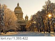 Купить «Сенатская площадь. Санкт-Петербург», эксклюзивное фото № 1393422, снято 18 января 2010 г. (c) Александр Алексеев / Фотобанк Лори