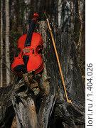 Купить «Лесная музыка», фото № 1404026, снято 6 мая 2009 г. (c) Мишарин Алексей / Фотобанк Лори
