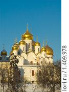 Купить «Москва. Благовещенский собор Московского Кремля», фото № 1409978, снято 22 января 2010 г. (c) Пантюшин Руслан / Фотобанк Лори