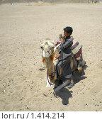 Верблюд и мальчик (2007 год). Редакционное фото, фотограф Кирилл Пирязев / Фотобанк Лори