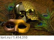Купить «Золотая и бронзовая карнавальные маски», фото № 1414310, снято 24 января 2010 г. (c) Елисей Воврженчик / Фотобанк Лори