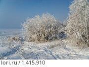 Купить «Зимний пейзаж», фото № 1415910, снято 16 января 2010 г. (c) Андрей Лабутин / Фотобанк Лори