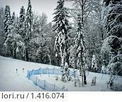 Купить «Горнолыжный комплекс Газпром Сочи, Красная поляна», фото № 1416074, снято 24 января 2010 г. (c) Шарабарин Антон / Фотобанк Лори