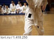 Юный каратист. Стоковое фото, фотограф Аврам / Фотобанк Лори