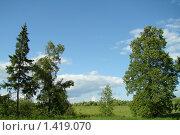 Летний пейзаж Средней полосы России. Стоковое фото, фотограф Нина Солнцева / Фотобанк Лори