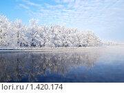 Купить «Заснеженные деревья, отражающиеся в ледяной воде Иматранского водохранилища. Иматра, Финляндия», фото № 1420174, снято 24 января 2010 г. (c) Татьяна Савватеева / Фотобанк Лори