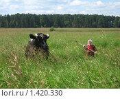 Купить «Бабушка на сенокосе вместе с коровой», фото № 1420330, снято 27 июля 2009 г. (c) Людмила Банникова / Фотобанк Лори