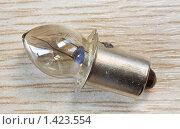 Лампочка для карманного фонарика. Стоковое фото, фотограф Сергей Лаврентьев / Фотобанк Лори