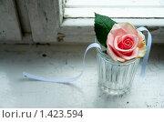 Роза с голубыми ленточками в граненом стакане. Стоковое фото, фотограф Храпова Марина / Фотобанк Лори
