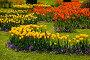 Весенний пейзаж, фото № 1426862, снято 29 мая 2009 г. (c) Виталий Романович / Фотобанк Лори