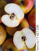 Купить «Яблоки», фото № 1427530, снято 20 января 2010 г. (c) Анна Лурье / Фотобанк Лори