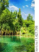 Купить «Озеро в лесу», фото № 1427798, снято 19 июня 2008 г. (c) Andrejs Pidjass / Фотобанк Лори