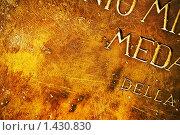 Купить «Античная кожаная текстура», фото № 1430830, снято 15 февраля 2009 г. (c) Andrejs Pidjass / Фотобанк Лори