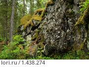 Карельский пейзаж. Стоковое фото, фотограф Виктор Вуколов / Фотобанк Лори