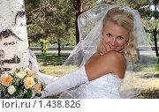Невеста с букетом у березки. Стоковое фото, фотограф Евгений Курлыкин / Фотобанк Лори