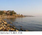 Берег Галилейского моря (2008 год). Стоковое фото, фотограф Ирина Никитина / Фотобанк Лори