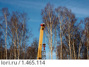 Купить «Стрела подъёмного крана в берёзовой роще», фото № 1465114, снято 1 января 2010 г. (c) Юрий Синицын / Фотобанк Лори
