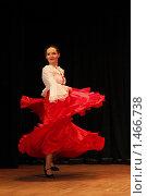 Купить «Танцовщица фламенко», фото № 1466738, снято 7 февраля 2010 г. (c) Яременко Екатерина / Фотобанк Лори